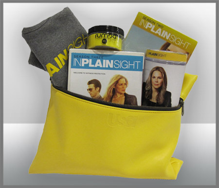 In Plain Sight Prize Pack